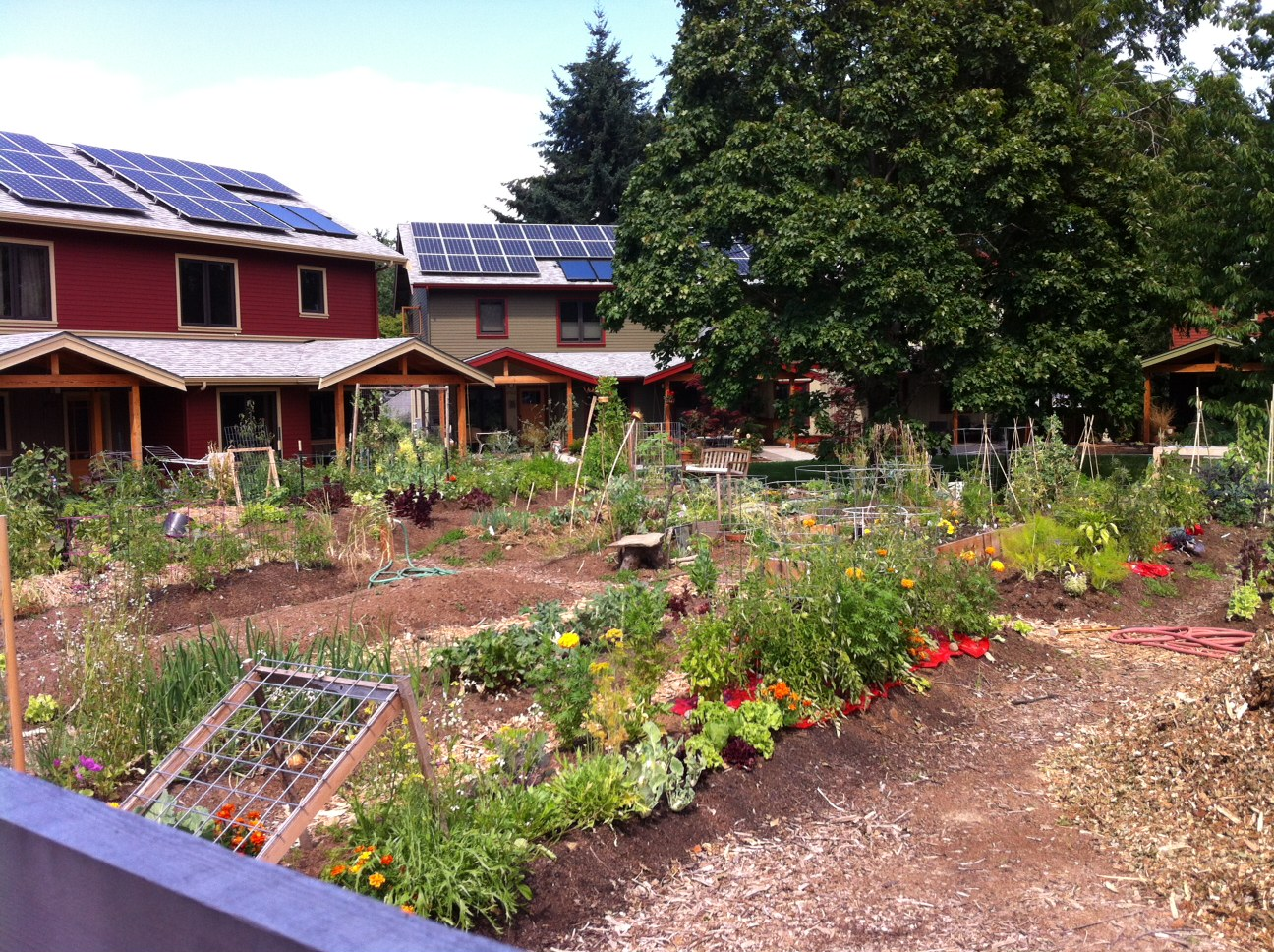 urban kitchen cottage grove oregon cully grove a new multi generational solar powered 8765